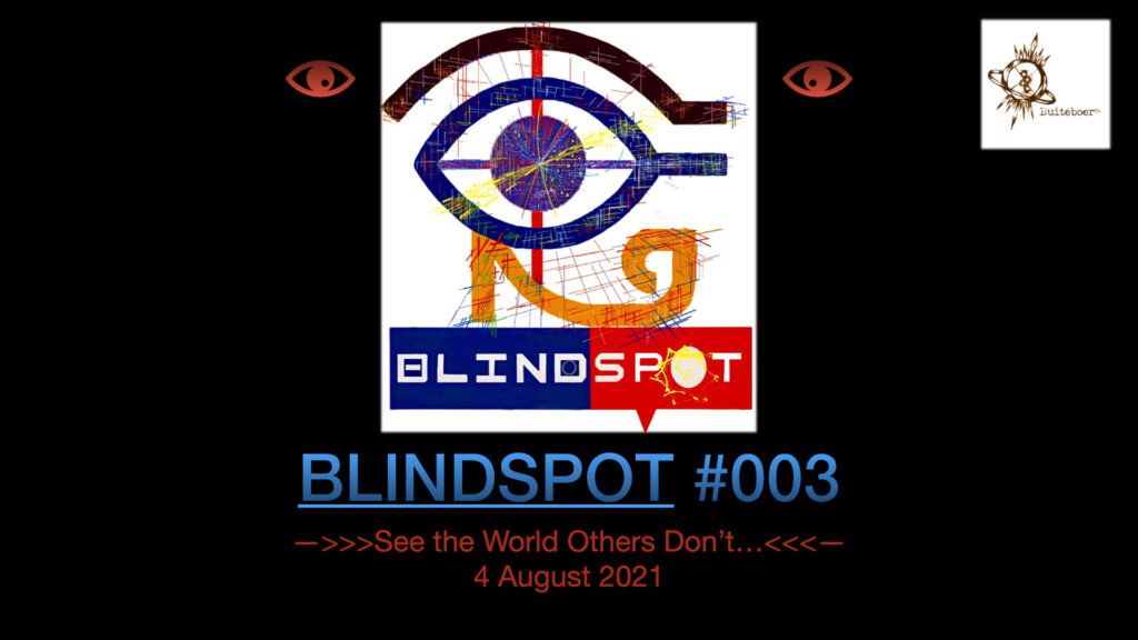 BLINDSPOT #003 -Testing Southern African Risk Waters